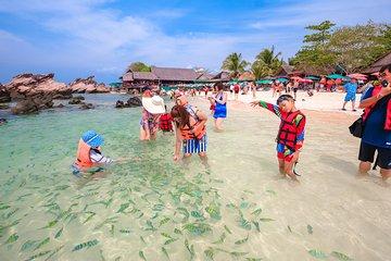 Excursión de un día a la isla de Phi...