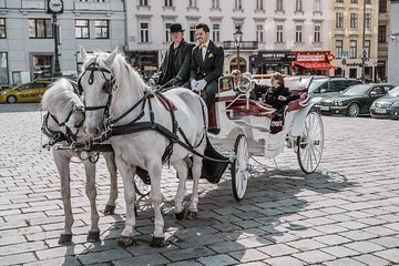 Riding Dinner - horse-carriage ride incl. food and beverages (SpaklingSight)