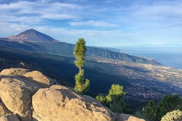 SHORE EXPERIENCE: TEIDE and NORTH, an island of contrasts and wines