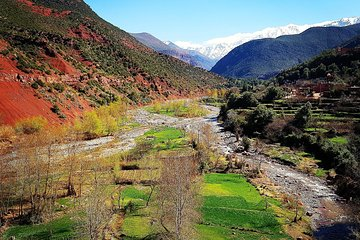Half-Day Atlas Mountains Tour From Marrakech