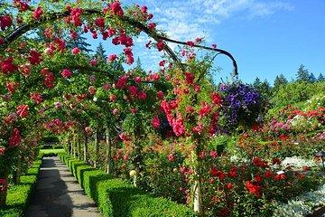 Victoria Butchart Gardens Express vom...