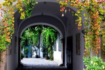 Hidden Gems in Vienna Inner City Private Walking Tour Tickets