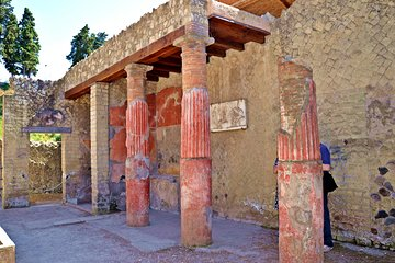 Herculaneum Private Tour with an Archaeologist