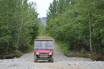 Black Diamond Treasure Hunt Excursion With Backcountry Dining 2021 Denali National Park