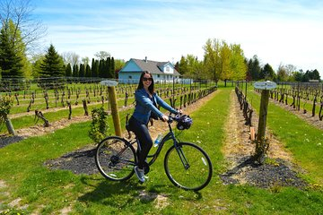 Niagara-on-the-Lake Cycle and Wine-Tasting Tour with Optional Lunch