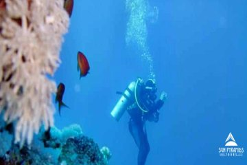 Diving Tour in Hurghada