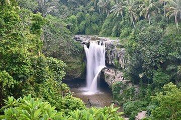 Lo mejor de Bali Tour-Ubud Waterfall