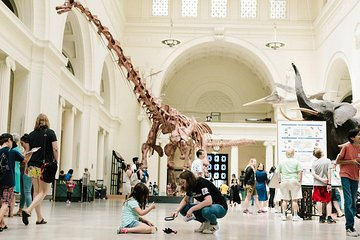 Field Museum of Natural History All-Access Pass