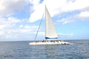 Saona Island Tour Premium