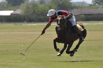 Polo Experience in Buenos Aires