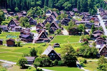 Tour Privado de Shirakawago a partir...