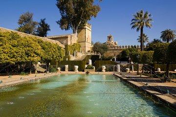 3-day Andalucia Tour: Seville & Granada from Cordoba