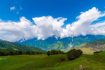 Bhrigu Lake - Alpine Meadow Trek
