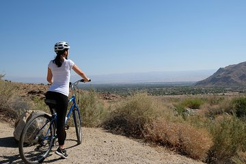 Palm Springs Indian Canyons Bike and Hike