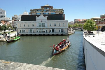 From Porto Aveiro Private Tour with...
