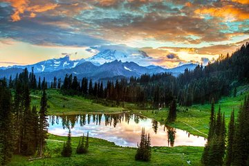1-Day Rainier National Park Tour from...