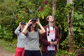 Regnbåge Birding Day Tour på AWARD ...