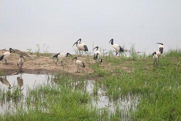 Mosi oa Tunya National Park Game Park