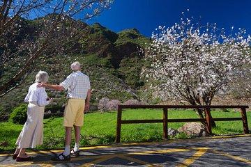 Visite aux fleurs d'amandiers de 4...