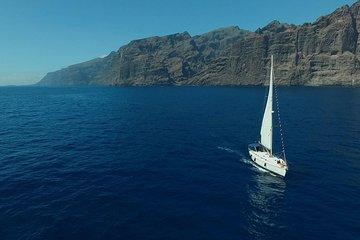 Discover Los Gigantes Cliffs (6-hours...