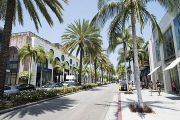 Elite Los Angeles Private Tour