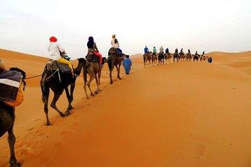 Privat 3-dagers Sahara ørkentur fra...