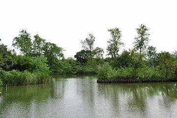Hangzhou - Xixi Wetland Park