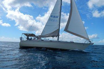 3 Hour Sailing & Snorkeling Adventure...