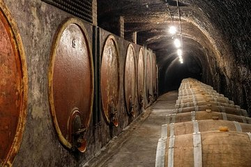 Wine & Culture tour in the north of Rome