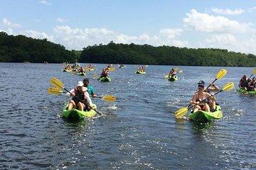 Kayaking in Caroni Wetland