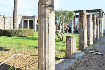 Pompeii Ruins & Volcano Vesuvius Tour with Private Guide & Skip-the-line Tickets