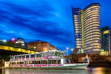 Danube River Cruise with Dinner and Viennese Songs in Vienna