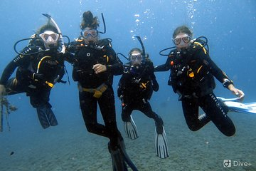 Discover Scuba Diving in Village of Abades, Santa Cruz de Tenerife