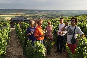 Small Group - Champagne Full Day Tour - Visit of 3 Champagne Producers / Growers
