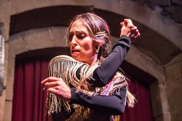 Private Barcelona Tour: Flamenco Show, Tapas Dinner & Gothic Quarter