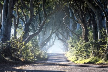 Game of Thrones Premium Tour from Belfast including Giants Causeway