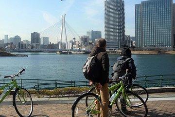 Tour en bicicleta por Tokio: Palacio...