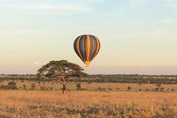 Half-Day Hot Air Balloon Safari and Breakfast in Serengeti
