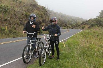 84b51d70074 THE TOP 10 Maui Bike & Mountain Bike Tours (w/Prices)