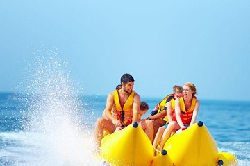 Top Hurghada Dolphin & Whale Watching   Lowest Price Guaranteed   Viator