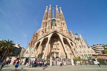 sagara family barcelona