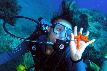Mykonos Scuba Diving