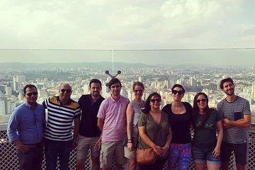 Private São Paulo Tour with Ibirapuera Park, Paulista Av and Downtown Visit