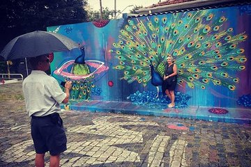 Private Street Art Tour of São Paulo with Batman´s Alley Visit