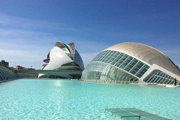 Excursión de un día a Valencia desde Calpe o Altea