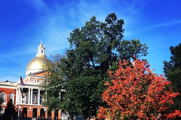Walking Tour of Freedom Trail History (Small Group)
