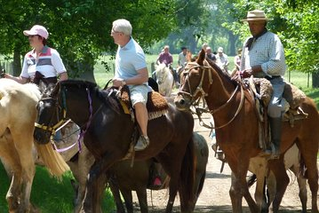Private Day Tour to an Argentinian Estancia