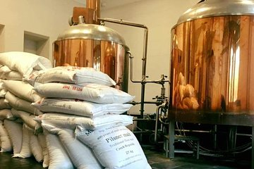 Family Microbrewery tour and Craft Beer Tasting