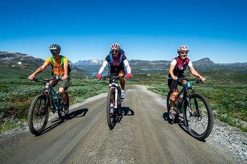 Mjolkevegen Cycling Route (7 days)