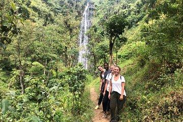 Materuni Waterfalls